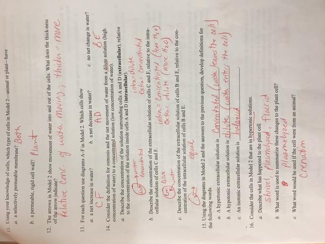 Biology 2016 17 Mrs Sheets 39 Cahs Sciences