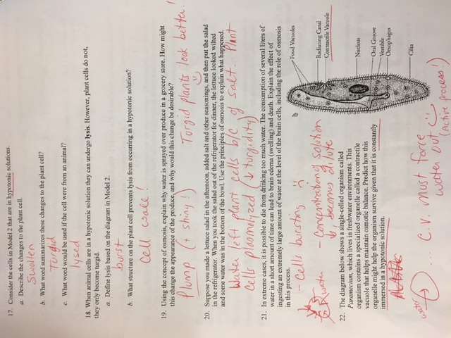 Biology 2016-17 - Mrs. Sheets' CAHS Sciences